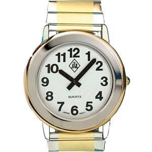 Unisex Two-Tone Watch with Expansion Band