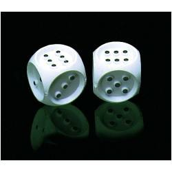 Brailled Dice