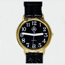 Unisex Low Vision Gold-Tone Watch with Black Face and Leather Strap